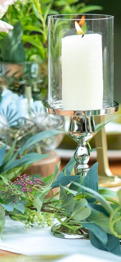 A wind blows out its flame easily. Here,the glass shield protects it. Glass Shield, Weeding, Pillar Candles, Grass, Weed Control, Killing Weeds, Candles