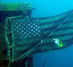 12 Best Dives on Guam
