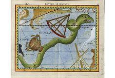 Hydra Constellation Diagram, 1776 on OneKingsLane.com