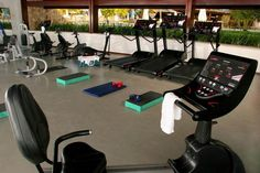 Stunning Experience in Exotic Escape : High Technical Treadmill Fresh Indoor Plants Comfort Gym Shiny Marble Floor