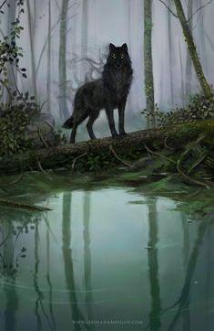"Leesha Hannigan on ""a little Dragon Age fan art for my fellow Solavellans"" Fantasy Wolf, Dark Fantasy Art, Fantasy Artwork, Anime Wolf, Mythical Creatures Art, Magical Creatures, Shadow Wolf, Wolf Artwork, Fantasy Kunst"
