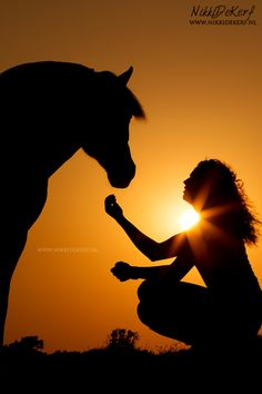A sunset horse photoshoot with Lois & Pien Keywords: sunset photography, horses, fjord horse, horse silhouette, equestrian photoshoot, equine photo, dreamy, horse & human, horse lover Sunset Silhouette, Silhouette Painting, Horse Silhouette, Human Photography, Equine Photography, Sunset Photography, Horse Riding, Horse Horse, Horses