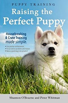 Puppy Training: Raising the Perfect Puppy (A Guide to Housebreaking, Crate Training & Basic Dog Obedience) by [O'Bourne, Shannon, Whitman, Peter] Puppy Training Guide, Dog Training Books, Crate Training, Training Your Dog, Training Classes, Potty Training, Training Collar, Training Quotes, Training School