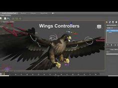 Rigging Wings in 3ds Max Tutorial (Peregrine Falcon)