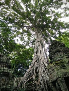 #Lessons From #Cambodia For #CurrentTimes #conscioustravel #travel #travelinsights #UNESCO #worldheritage #angkor #peace #genocide #earthhealing #killingfields #awareness #globalconsciousness #energyvortex #sacredsites