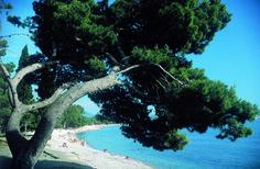 Wyjątkowe wybrzeże Czarnogóra