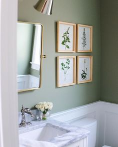 Powder room painted in Lichen by Farrow and Ball