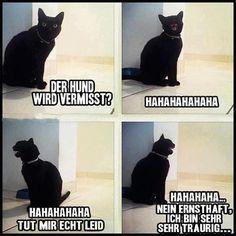 mehr lustige bilder gibt es hier: http://lachlos.ch