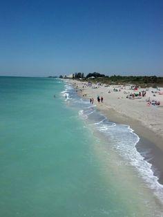 Venice Beach Florida Sarasota Beaches State Of