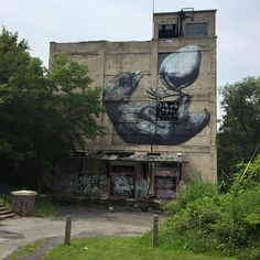 wall therapy mural - rochester ny