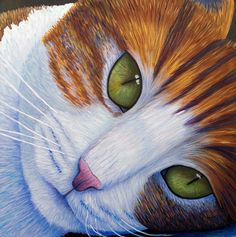 Chat de Brian Commerford