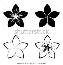 Image result for frangipani line drawing