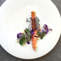 Miso glazed alaskan crab and black squid ink tuile with purple cauliflower salad • สลัดกะหล่ำม่วงกะบก้ามปูอลาสกันย่างกับซอสมิโสะ