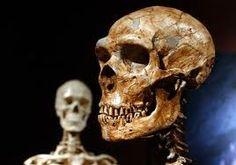A visão aguçada dos neandertais pode explicar porque eles não puderam lidar com a mudança ambiental e morreram, apesar de terem o cérebro do mesmo tamanho que os seres humanos modernos, sugere uma nova pesquisa.