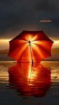 Umbrella in sundown