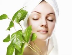 This is the right time when India is making a strong appearance in International market in various product and services. Skin care and cosmetic products have also making a strong presence in Indian as well as Internationals market.