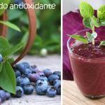 Batido antioxidante natural de gran alcance