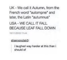 WE CALL IT FALL BECAUSE LEAF FALL DOWN