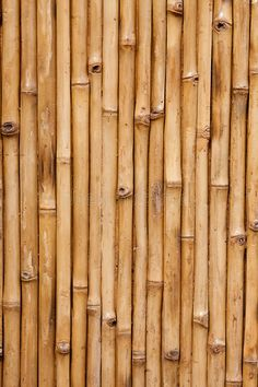 Photo about Bamboo background texture with columns of wood. Image of textures, abstract, bamboo - 11237863 Bamboo Background, Plains Background, Wood Texture Background, Background Vintage, Background Patterns, Backgrounds Wallpapers, Pretty Backgrounds, Vintage Backgrounds, Summer Backgrounds