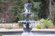 Fountain of Ice   Photography by Bob Ayers  gardens.duke.edu