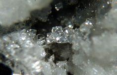 Katoite, Ca3Al2(SiO4)3-x(OH)4x x=1.5-3, Campomorto Quarry, Pietra Massa Locality, Montalto di Castro, Viterbo Province, Latium, Italy. Group of colorless octahedral crystals of katoite up to 0.1 mm. Type locality. Copyright: © D. Preite