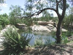 The BIG SPRING - located just south of the city of Big Spring, in Howard County Texas at the Comanche Trail Park. The spring was for thousands of years a watering place in a dry land for Indians, buffalo, and wildlife. From the late 18th through the 19th century the spring was virtually owned by the Comanche. Several branches of the Great Comanche War Trail funneled to/from the Big Spring as they rode south to raid northern Mexico.