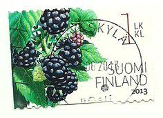 Finland - boysenmarjapostimerkki