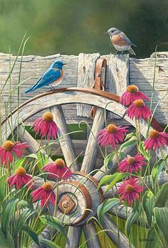 """Bluebirds and Coneflowers"" - by Susan Bourdet"