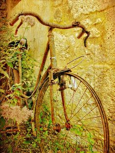 Rusty Bike by On Linden Way, - Recherche Google