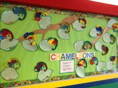 Chameleon Bulletin Board