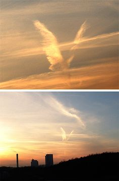 Calling all Angels 💛 All Nature, Science And Nature, Amazing Nature, Angel Pictures, Cool Pictures, Cool Photos, Angel Clouds, Sky And Clouds, Beautiful Sky