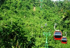 Ba Na Hill- Da Nang - Vietnam Vietnam bamboo travel