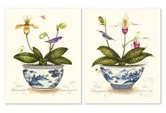 Kelly Cutter, Orchids Diptych