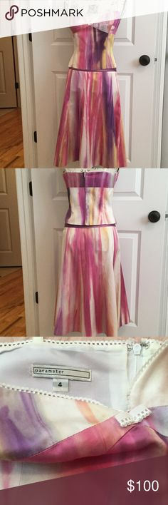 "Parameter AMAZING work of art skirt and camisole AMAZING work of art skirt and camisole in a rainbow of colors. Worn only 2 times - each time had tons of women ask where I got it which was an upscale boutique. Skirt is a 6 and camisole is a 4.  Cami-Bust 33"", waist 29, skirt 32"" waist - sits below natural waist. Parameter Skirts A-Line or Full"