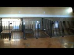 Extra Large Indoor Dog Kennel | Indoor Kennel Project! - Horsetopia ...