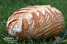 Nafouknutá chlebová placka z bývalé Jugoslávie Bread Recipes, Cooking Recipes, Healthy Recipes, Healthy Food, Bread Art, Salty Foods, Our Daily Bread, Ciabatta, Pizza Dough