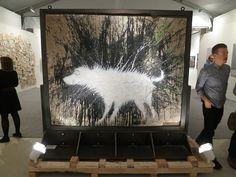 "Banksy's ""Wet Dog,"" Art Basel 2012"