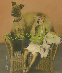 Circus Dogs Terrier  Monkey vintage photo  by TheIDconnection, $40.00