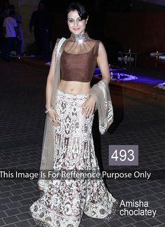 Ameesha Patel Multi Color Net Lehenga Choli