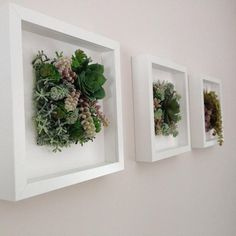 Succulent wall arrangement succulent wall decor.