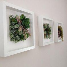 Succulent wall arrangement succulent wall decor.