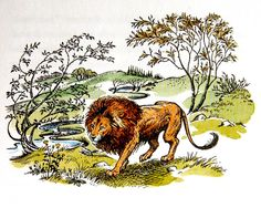 'Aslan' illustration by Pauline Baynes for The Chronicles of Narnia (1950) by C.S. Lewis