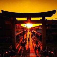宮地嶽(みやじだけ)神社・光の道