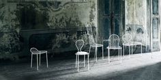 Family Chair | Armchairs and chairs | Products | Living Divani