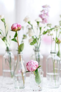Flowers in Glass Bottles flowers bouquet vase arrangement fresh cut flowers Fresh Flowers, Beautiful Flowers, Cut Flowers, Pink Flowers, Vase Shapes, Vase Centerpieces, Vases Decor, Pink Peonies, Planting Flowers