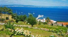 Vistas del puerto en la isla de Ons, un rincón de #Galicia que no os podéis perder este #verano #SienteGalicia    ➡ Descubre más en http://www.sientegalicia.com/