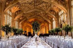 Three banquet style wedding tables with white linen and overhead green foliage centre pieces. Warm orange lighting. Plan Your Wedding, Wedding Blog, Wedding Venues, Wedding Tables, Wedding Ceremony, Wedding Ideas, Divinity School, Library Wedding