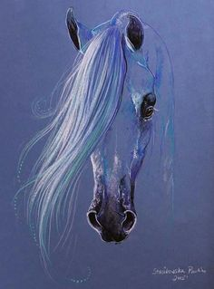 ♥ arabian horse art *