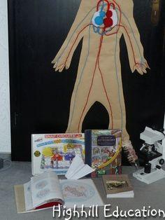 Science Activities for Kids