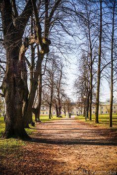 Park Czartoryskich w Puławach